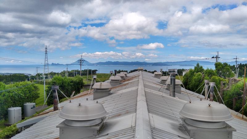錦江町 緑茶工場 現地調査 (2021年6月)